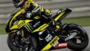 Colin Edwards dressed as a bumblebee at 2011 MotoGP in Losail